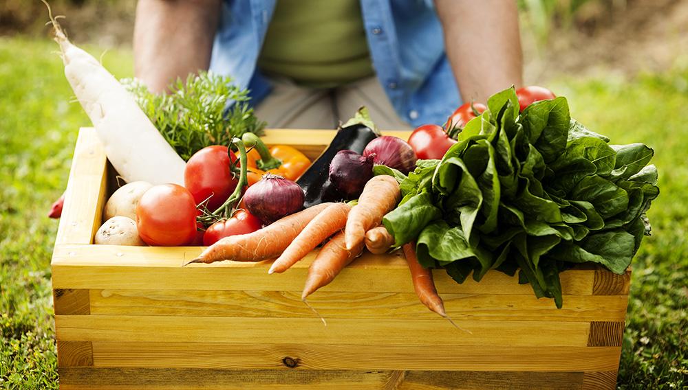 Potrjena študija v Franciji dokazala, da ekološka hrana zmanjša tveganje za rakom